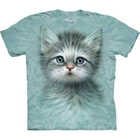 T-Shirt Blue Eyed Kitten